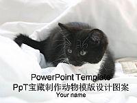 可爱黑白色小猫咪在被窝里动物PPT模板