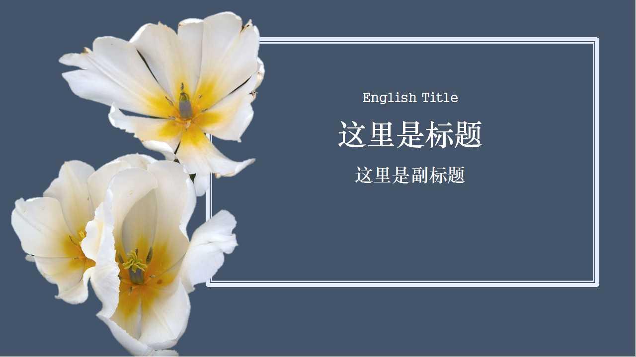 白色郁金香PPT模版下载