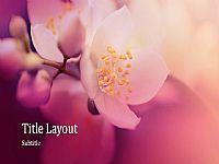 唯美的淡紫色花朵背景PPT模版