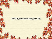 枫叶相框PPT素材模板