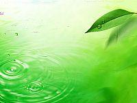 绿色、水滴、清澈好看的ppt背景素材