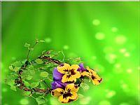 清新绿色背景植物ppt背景图片