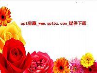 中国电信迎接上级检查PPT模板