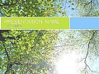 林间阳光-风景PPT模板